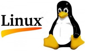 linux-penguin-logo (Copiar)